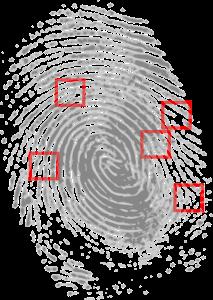 prova-fingerprint-146242_1280